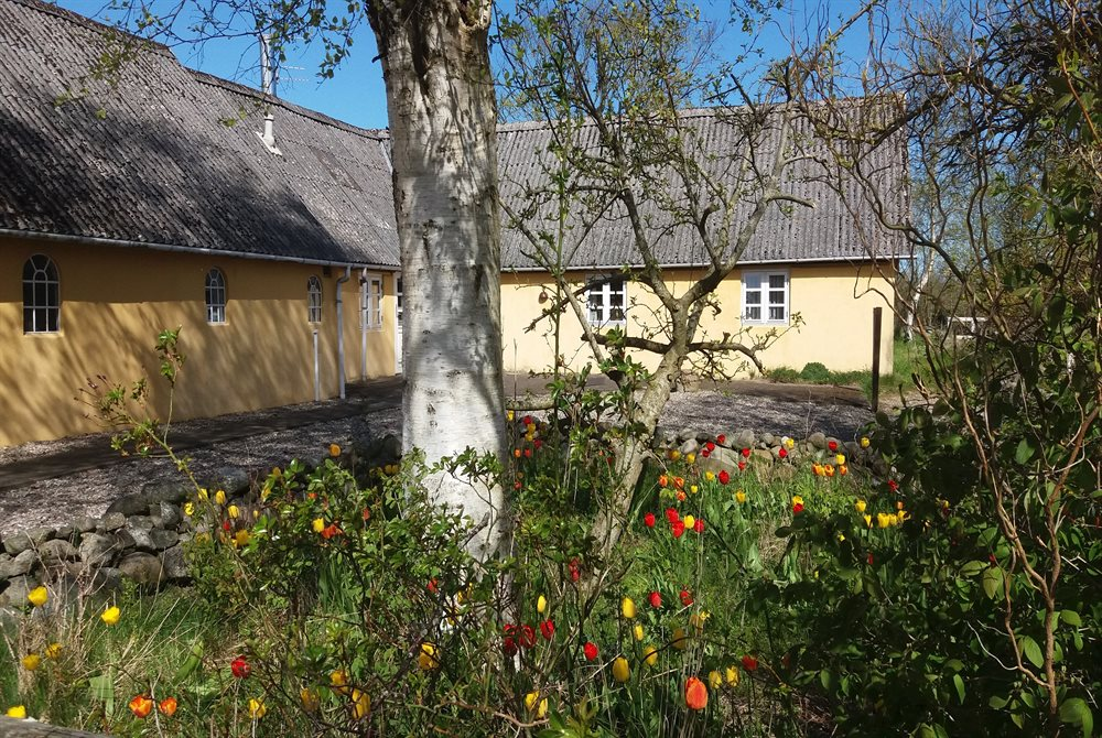Holiday home in Laeso, Byrum for 7 persons