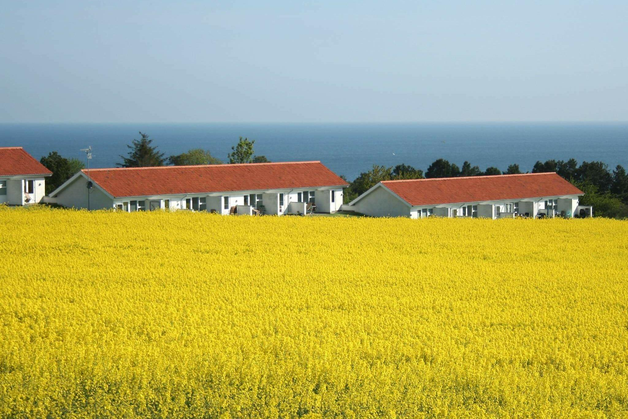 Holiday home in Allinge for 2 persons