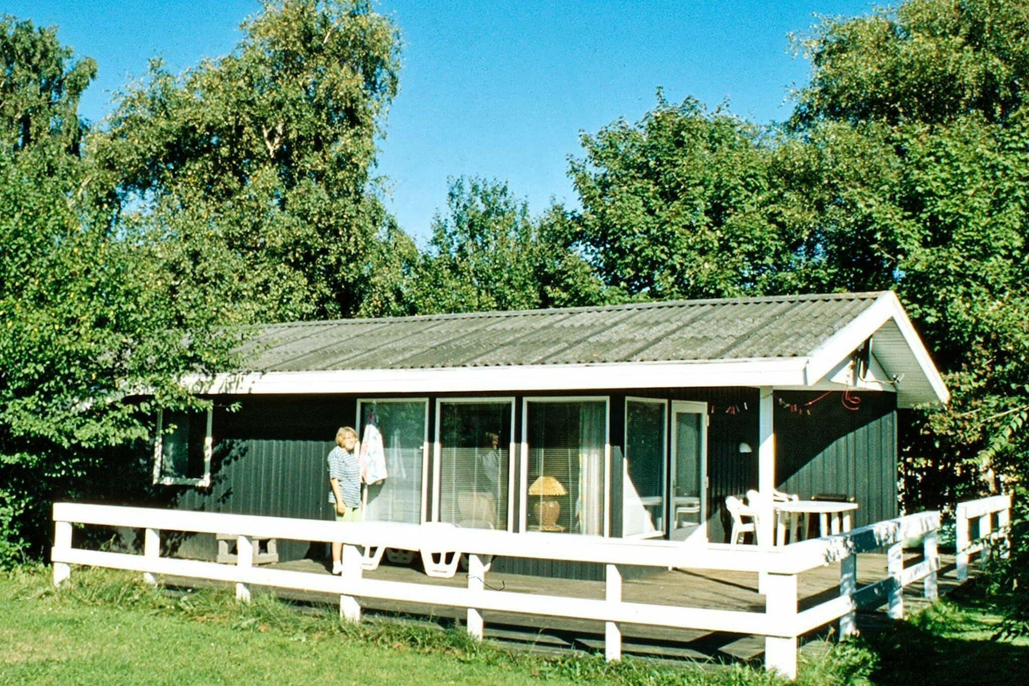 Holiday home in Borkop for 6 persons